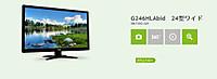 Acer_g246hlabid